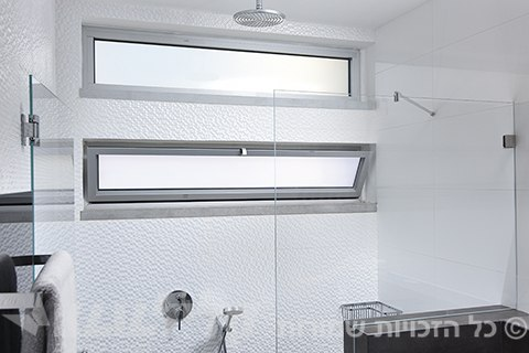 Shower Kip windows