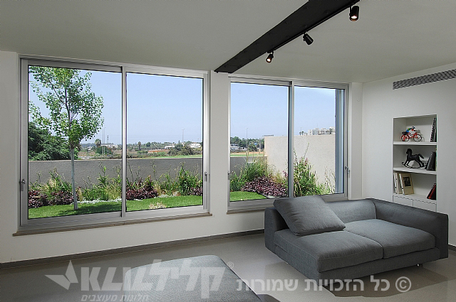 Designed windows for the living room