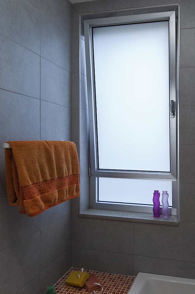Dry kip windows - bathroom